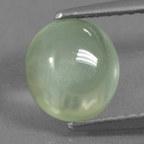 Green Prehnite Gem - 1.7ct Oval Cabochon (ID: 459258)
