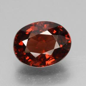 Rouge Grenat Pyrope gemme - 1.6ct Ovale facette (ID: 463550)