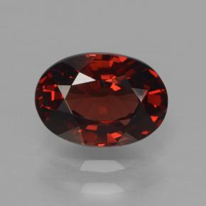 tiefrot Pyrop-Granat Edelstein - 1.4ct Oval facettiert (ID: 466034)