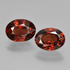 Medium Red Pyrope Garnet Gem - 1.4ct Oval Facet (ID: 466287)
