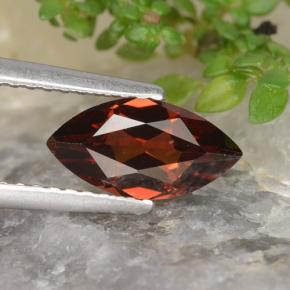 Red Pyrope Garnet Gem - 1.2ct Marquise Facet (ID: 478934)