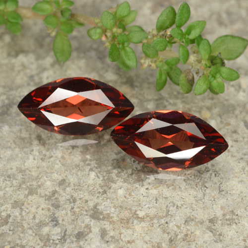 Scarlet Red Pyrope Garnet Gem - 1.2ct Marquise Facet (ID: 479041)
