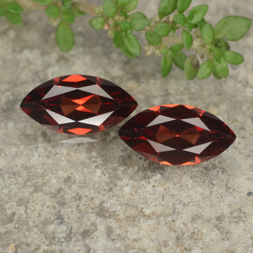 Red Pyrope Garnet Gem - 1.2ct Marquise Facet (ID: 479196)