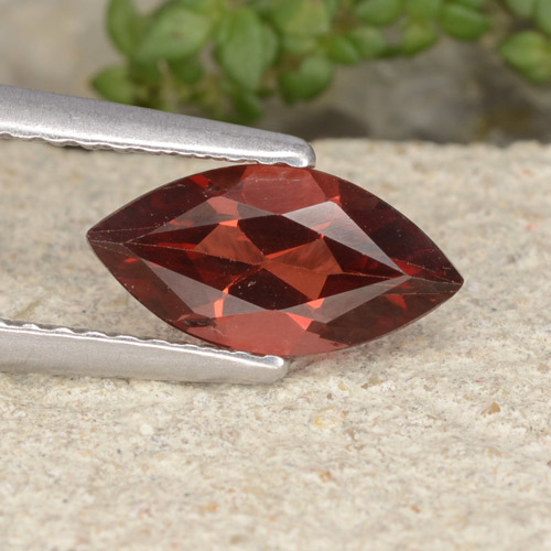 Intense Red Pyrope Garnet Gem - 1.2ct Marquise Facet (ID: 479378)
