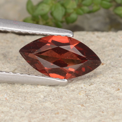 Red Pyrope Garnet Gem - 1.2ct Marquise Facet (ID: 479380)