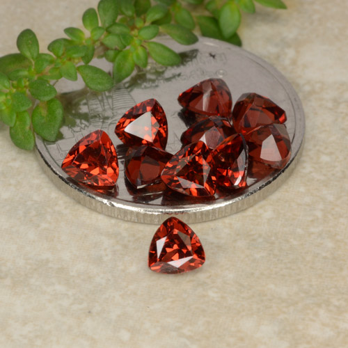 0.3ct Facette trillion Scarlet Red Grenat Pyrope gemme (ID: 479765)
