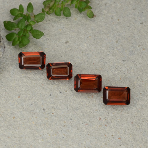 0.5ct Octagon Step Cut Dark Red Pyrope Garnet Gem (ID: 480687)