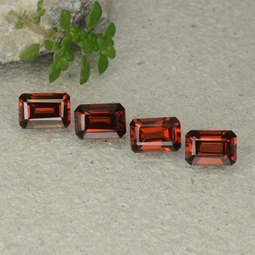 Red Pyrope Garnet Gem - 0.8ct Octagon Step Cut (ID: 480690)