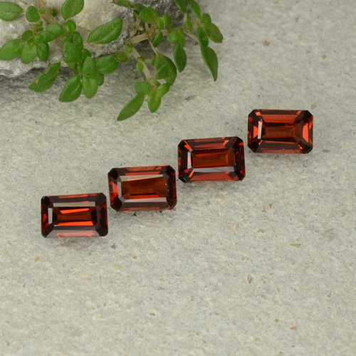 0.6ct Octagon Step Cut Dark Red Pyrope Garnet Gem (ID: 480691)