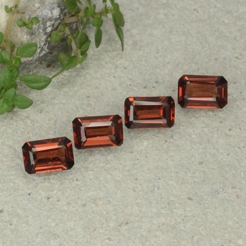 0.5ct Octagon Step Cut Deep Red Pyrope Garnet Gem (ID: 480693)