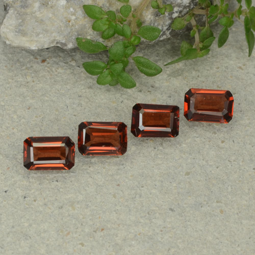 0.5ct Octagon Step Cut Deep Red Pyrope Garnet Gem (ID: 480695)