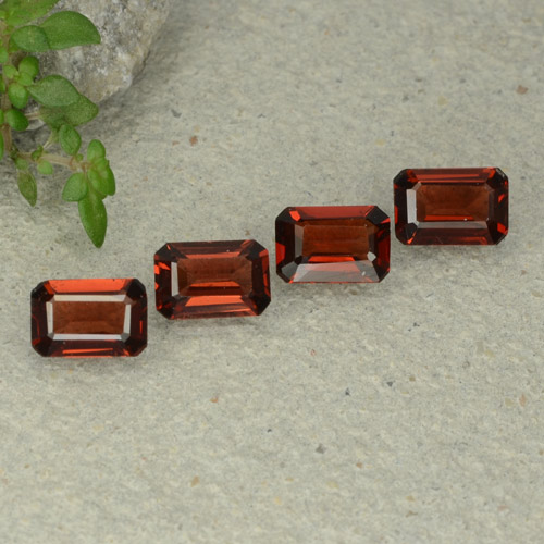 0.6ct Octagon Step Cut Deep Red Pyrope Garnet Gem (ID: 480698)