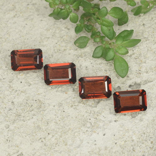 0.5ct Octagon Step Cut Deep Red Pyrope Garnet Gem (ID: 480718)