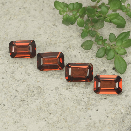 0.5ct Octagon Step Cut Medium Red Pyrope Garnet Gem (ID: 480722)