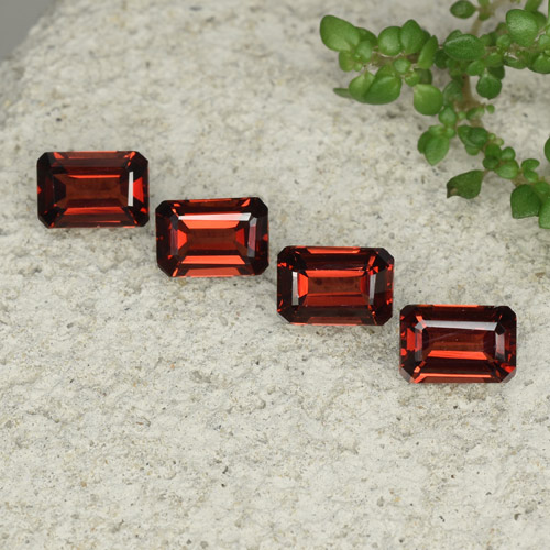 0.7ct Octagon Step Cut Dark Red Pyrope Garnet Gem (ID: 480768)