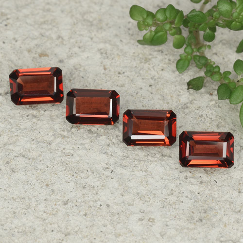 0.6ct Octagon Step Cut Dark Red Pyrope Garnet Gem (ID: 480769)