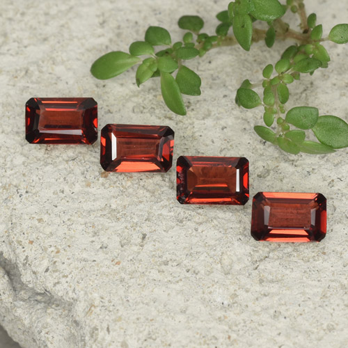 0.5ct Octagon Step Cut Scarlet Red Pyrope Garnet Gem (ID: 480771)