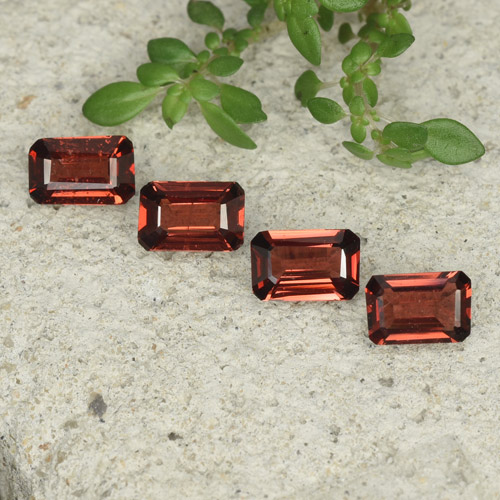 0.5ct Octagon Step Cut Deep Red Pyrope Garnet Gem (ID: 480776)