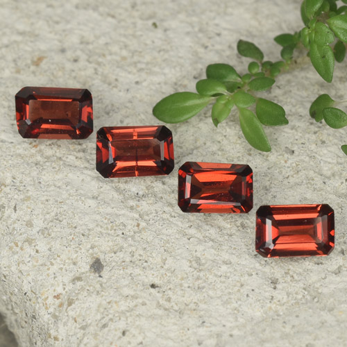 0.5ct Octagon Step Cut Deep Red Pyrope Garnet Gem (ID: 480777)