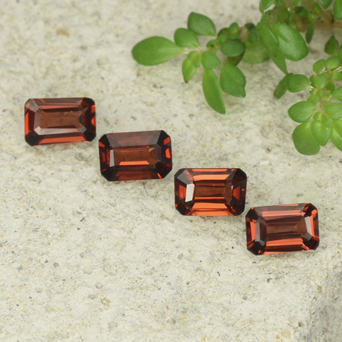 0.5ct Octagon Step Cut Deep Red Pyrope Garnet Gem (ID: 480914)