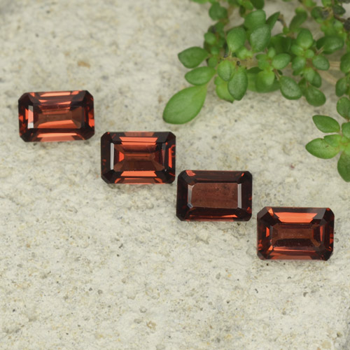 0.8ct Octagon Step Cut Deep Red Pyrope Garnet Gem (ID: 480919)