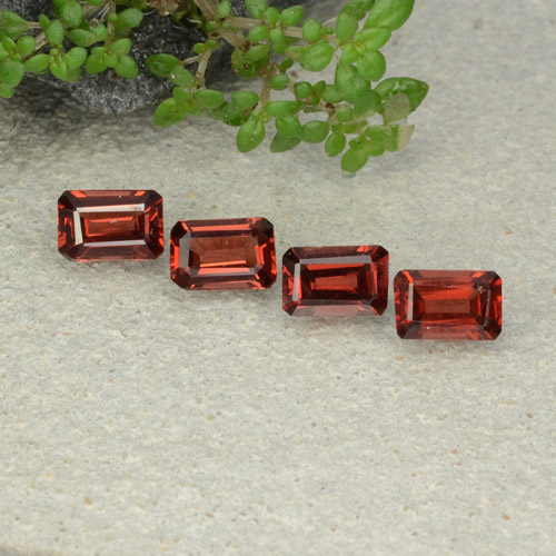 0.6ct Octagon Step Cut Deep Red Pyrope Garnet Gem (ID: 480923)