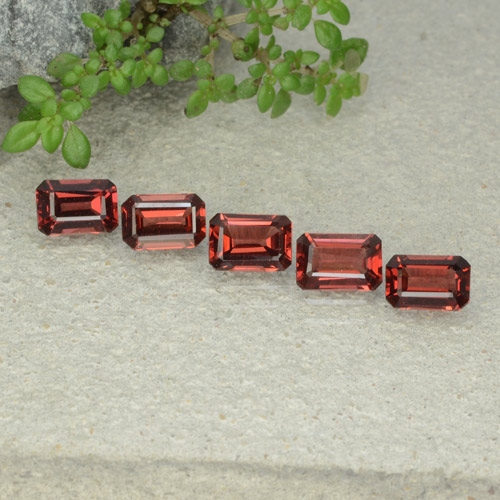 0.7ct Octagon Step Cut Deep Red Pyrope Garnet Gem (ID: 480929)