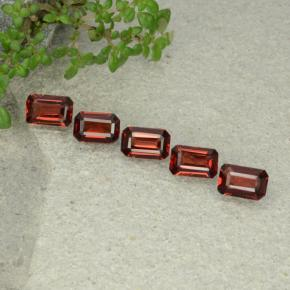 0.5ct Octagon Step Cut Deep Red Pyrope Garnet Gem (ID: 480932)