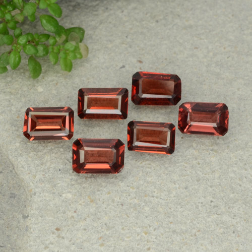 0.5ct Octagon Step Cut Dark Red Pyrope Garnet Gem (ID: 480936)