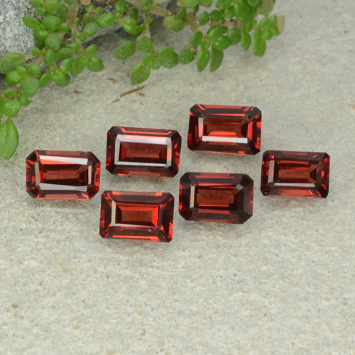 0.6ct Octagon Step Cut Dark Red Pyrope Garnet Gem (ID: 480939)