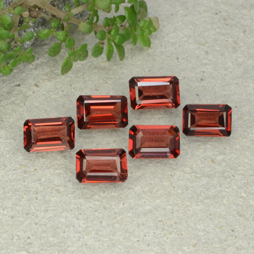 0.5ct Octagon Step Cut Dark Red Pyrope Garnet Gem (ID: 480942)