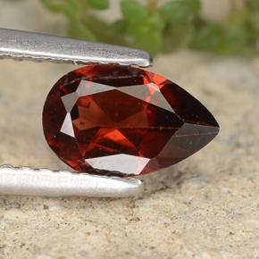 Deep Red Pyrope Garnet Gem - 0.9ct Pear Facet (ID: 487443)