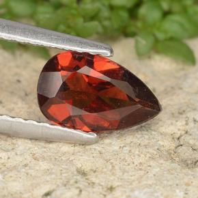 Medium Red Pyrope Garnet Gem - 0.9ct Pear Facet (ID: 487798)
