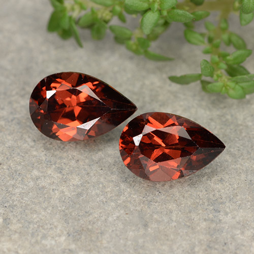 Red Pyrope Garnet Gem - 1.1ct Pear Facet (ID: 487962)