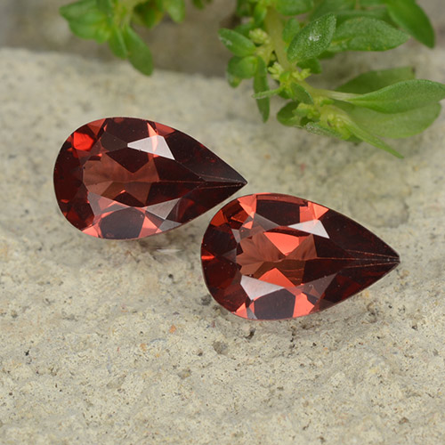 Red Pyrope Garnet Gem - 0.8ct Pear Facet (ID: 488098)