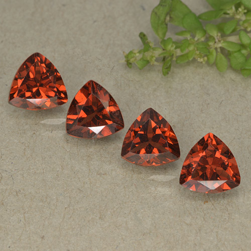 Currant Red Pyrope Garnet Gem - 0.9ct Trillion Facet (ID: 498795)