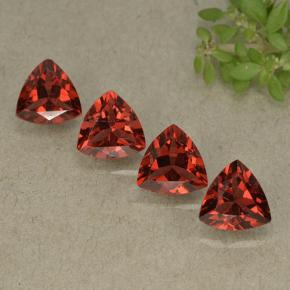 Red Pyrope Garnet Gem - 0.9ct Trillion Facet (ID: 498798)