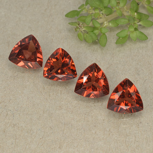 Red Pyrope Garnet Gem - 0.8ct Trillion Facet (ID: 498803)