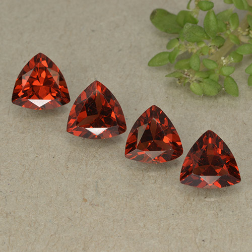 Dark Red Pyrope Garnet Gem - 0.9ct Trillion Facet (ID: 498804)
