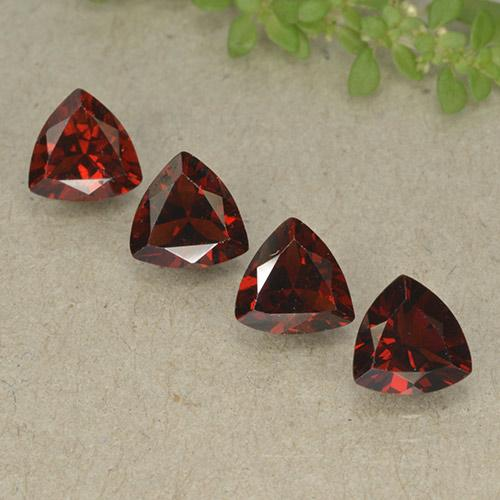 Dark Red Pyrope Garnet Gem - 0.9ct Trillion Facet (ID: 498812)