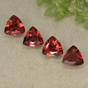 Deep Blood Red Pyrope Garnet Gem - 0.8ct Trillion Facet (ID: 498814)
