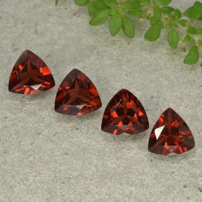 Merlot Red Pyrope Garnet Gem - 0.8ct Trillion Facet (ID: 498912)
