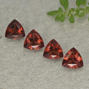Deep Red Pyrope Garnet Gem - 0.8ct Trillion Facet (ID: 498919)