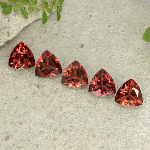 Scarlet Red Pyrope Garnet Gem - 0.9ct Trillion Facet (ID: 499033)