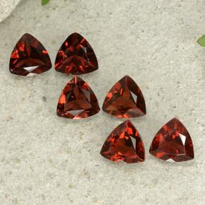 Deep Red Pyrope Garnet Gem - 0.8ct Trillion Facet (ID: 499036)