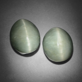 Medium Grey Quarz-Katzenauge Edelstein - 6.1ct Oval Cabochon (ID: 409388)