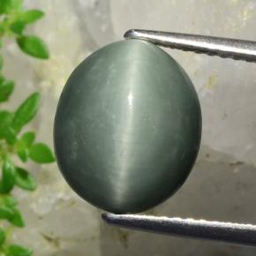 Green Quartz Cat's Eye Gem - 5.5ct Oval Cabochon (ID: 472405)