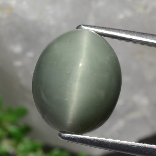 Green Quartz Cat's Eye Gem - 5.8ct Oval Cabochon (ID: 472438)