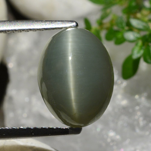 Green Quartz Cat's Eye Gem - 5ct Oval Cabochon (ID: 472605)