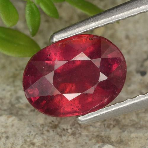 thumb image of 1.8ct Oval Facet Red Ruby (ID: 465561)